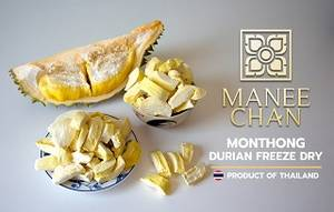 Wholesale durian: Thailand Durian Freezed Dried High Quality, Maneechan