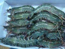 air fresh: Sell Black Tiger Shrimps, Frozen King Prawns,White Shrimps