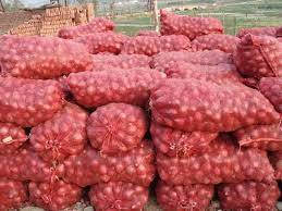 dried onion: Sell Fresh Golden Onion