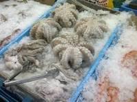 Octopus Seafood Fish
