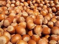 Cashew Nuts, Macadamia Nut, Pistachio,