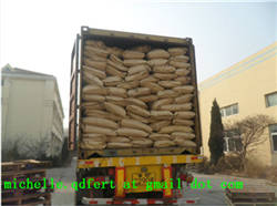 Wholesale quality harvested seaweed: Soluble Organic Seaweed Fertilizer Kelp Fertilizer  Seaweed Extract