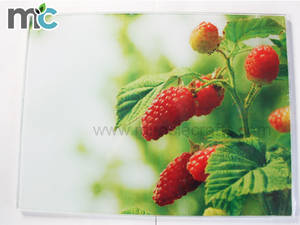Wholesale Cutting Boards: MCTempered Glass Cutting Boards Fruit Vegetable Chopping Blocks Heating Colding Pad
