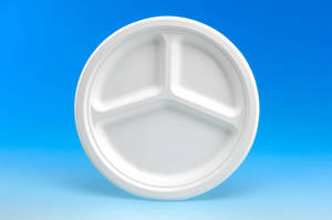 Wholesale paper plate: Pulp Mold Paper Plate (10, 3-Compartment)