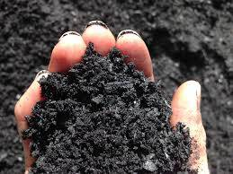 Wholesale soil activator: Biochar Bulk Sales, Best Price and Fast Delivery Time.