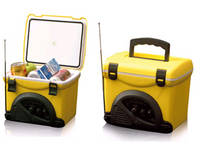 Thermoelectric Cooler/Cooler Radio/Cooler Bag/Fishing Box BW-5L with Good Quality Factory Price