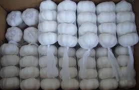 Wholesale garlic granules: Fresh Garlic
