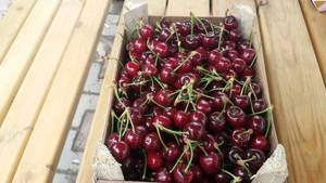 Wholesale Cherries: Cherry