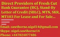 Sell Fresh Cut BG, SBLC and MTN
