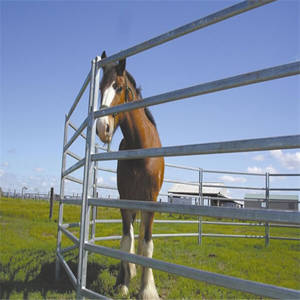 Wholesale rhs steel sizes: High Quality Livestock Panel