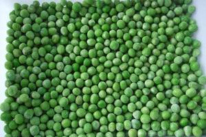 Wholesale korea: 2017 New Crop IQF Green Peas Frozen with Brc, Kosher, ISO22000 Grade A 10kg