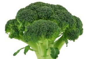 Wholesale Fresh Broccoli: 100% Natural Organic Broccoli Sprout Powder