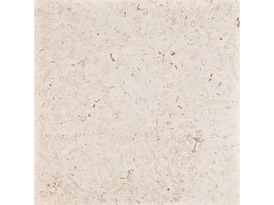 Marbella Shellstone Tiles 3889466 Product Details View