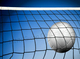 Sell volleyball net