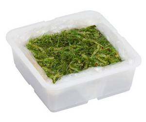 Wholesale japanese seaweed salad: Frozen Japanese Seaweed Salad (Hiyashi Wakame) 5/1KG Tub [stock#71319 1]