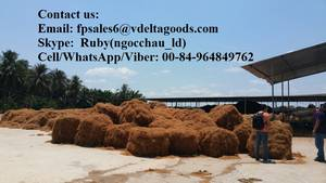 Wholesale sell: Sell COCONUT FIBER-high Quality (Whatsapp/ Cell: 0084-964-849-762)