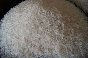Wholesale white rice: Thai Organic White Jasmine Rice (OEM)