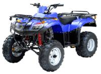 TaoTao 300 Utility ATV 4 Speed Manual