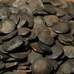 Wholesale shikimic acid: Shikimic Acid  98%,Griffonia Seed Extract