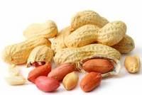 Peanuts, Groundnut Kernels, Bleached Peanuts,