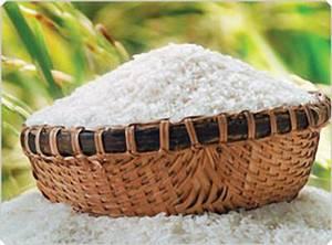 Wholesale Rice: Vietnam Jasmine Rice
