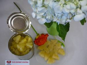 Wholesale Canned Fruit: Pineapple