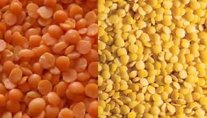 Wholesale split lentils: Split Red Lentils, Split Yellow Lentils, Whole Yellow Lentils