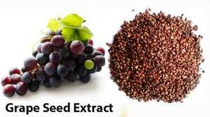 Wholesale grape seed extract: Grape Seed Extract 95% Proanthocyanidins
