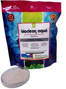 Wholesale ammonia solution: Feed Supplement for Tiger Shrimps