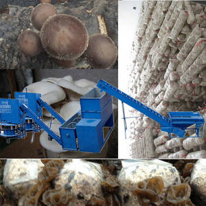 Wholesale enoki mushroom bags: Shiitake Mushroom Cultivation Machine for Farm