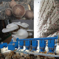 Oyster Growing Equipment for Mushroom Farm To Use