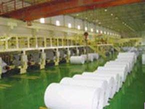 Wholesale Carbon Paper: Carbonless Paper