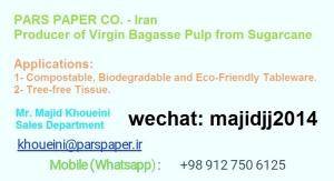 Wholesale mobile: Bagasse Pulp