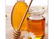 Honey & Honey Products - Honey