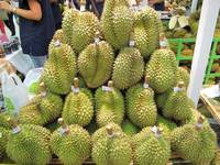 Sell Fresh Durian