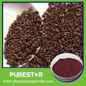 Wholesale grape seed extract: Grape Seed Extract OPC