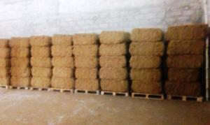 Wholesale coconut fiber: Coconut Coir Fiber