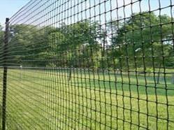Sell Plastic Square Mesh Garden Mesh Bird Netting Deer Fence