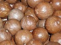 Wholesale Macadamia Nuts: Raw Macadamia Nuts - Best Prices