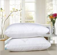 Cotton Down Back Support Pillow Cushion Insert