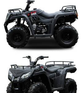 Wholesale atv: Rato 250cc ATV for Sale Cheap