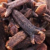 TUBING: Sell Dried Madagascar Cloves, Annatto Seeds ,Cassia/Cinnamon Stick,Cassia Tube