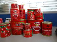 Quality Tinned Tomato Canned Paste/Canned Beans