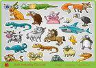 Wholesale adhesive paper: Fancy Design Adhesive Sticker Paper Waterproof Any Shape For Kids Play