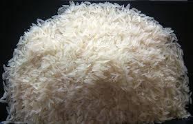 Wholesale white rice: Indian Long Grain White Rice