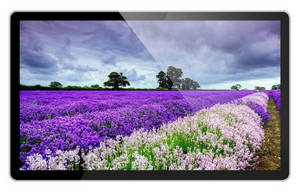 Wholesale pc station: 15.6, 18.5, 21.5 Inch Android LCD Advertising Display