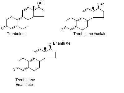 tren acetate vs parabolan