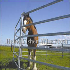 Wholesale rhs steel sizes: Hot Sale Galvanized Metal Horse Livestock Fence