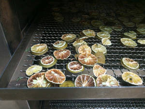 Wholesale vietnam: Dried Lemon / Lime From Vietnam Manufacture
