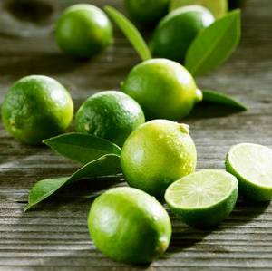 Wholesale price: Fresh Seedless Lime - High Quality - Lowest Price for Sale